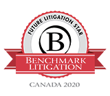 2020 Benchmark Litigation Future Litigation Star Badge