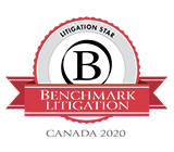 2020 Benchmark Litigation Star Badge